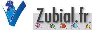 zubial-blog-logo